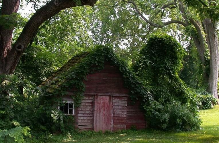 slide-shed